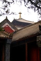 afternoon, Shaolin Temple