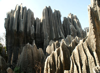 formation #3, Stone Forest