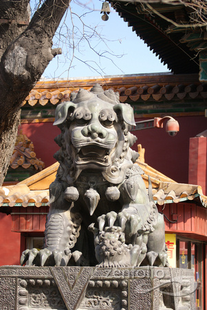 Lion in Lama Temple