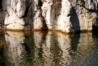 pool reflection #3, Stone Forest
